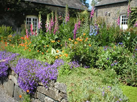 Neuadd Farm Cottages Gardens