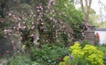 Neuadd Farm Cottages Garden