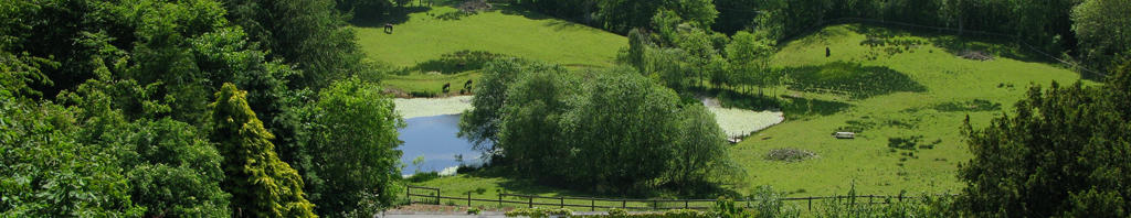Fishing Lake at Neuadd Farm Holiday Cottages